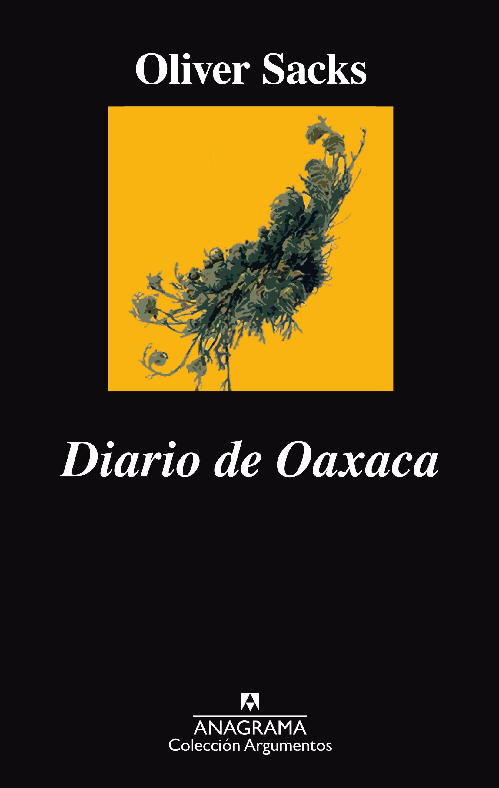 Resultado de imagen para Diario de Oaxaca